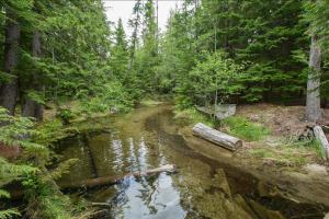 Two Mouth Creek