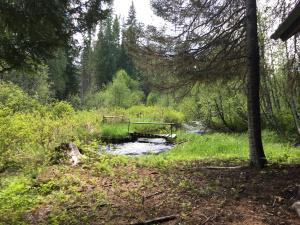 Reeder Creek