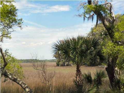 3 Cape Palmetto Trail, Edisto Island, 29438, ,For Sale,Cape Palmetto,1011223