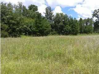 Photo of 1516 Old Gilliard Rd, Ridgeville, SC 29472