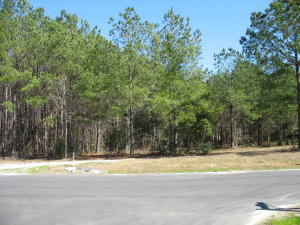 Home for Sale Running Branch Lane, Guilford Gates, Summerville, SC