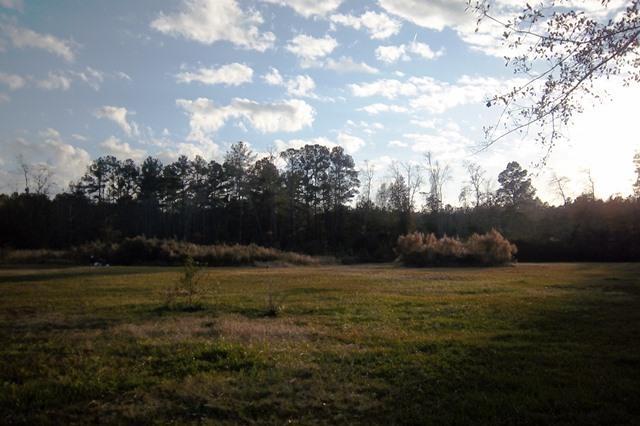 Chelsia Woods Homes For Sale - 235 Robin, Walterboro, SC - 29
