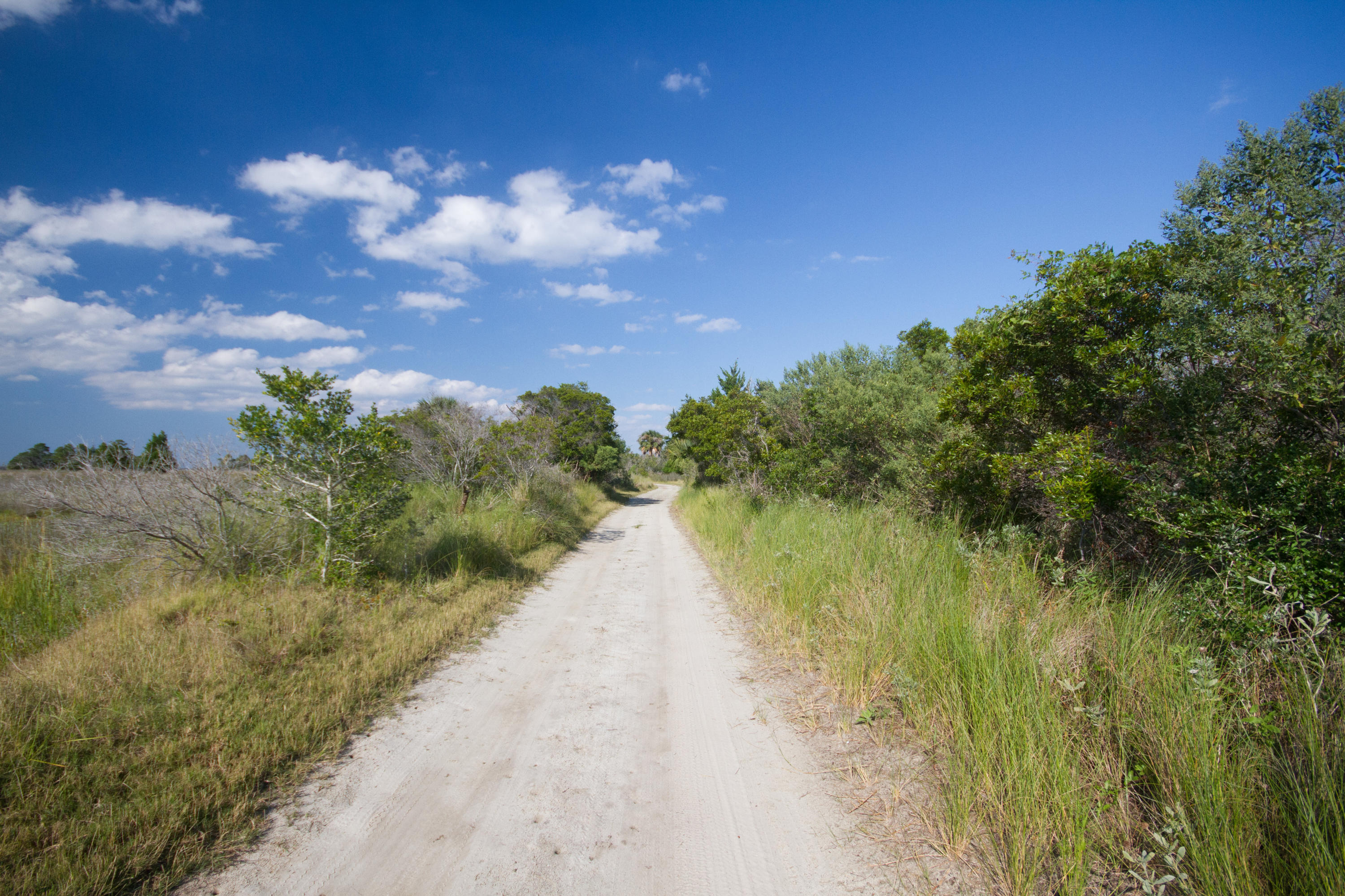 Photo of 350 Old House Ln #102, Dewees Island, SC 29451
