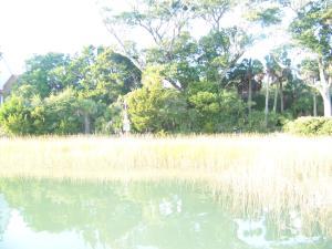 Deep Water homes in Isle of Palms