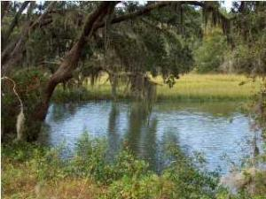 Home for Sale Fenwick Plantation Road, Fenwick Hall, Johns Island, SC