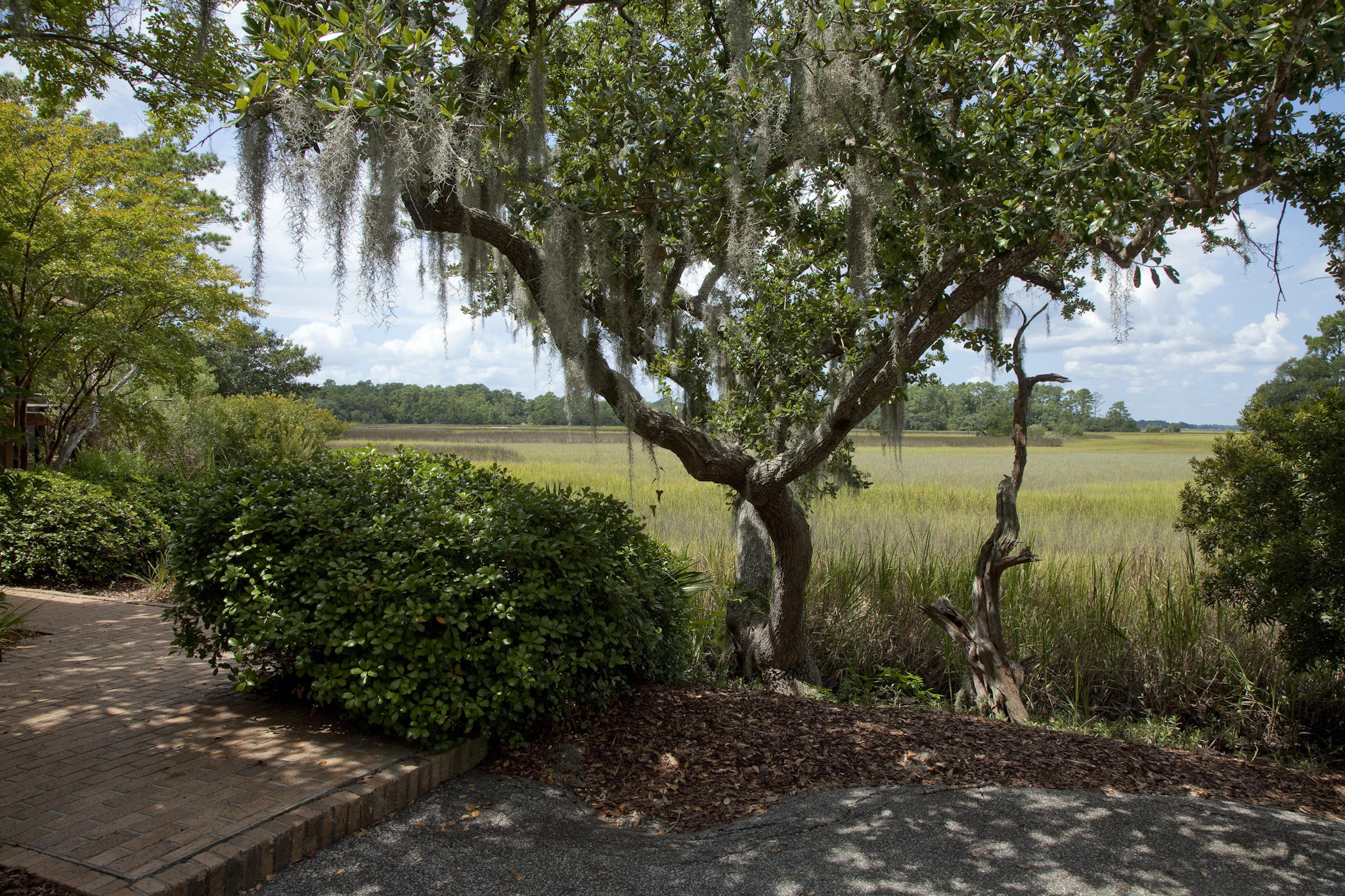 Photo of 1505 Hurtes Island Dr, Charleston, SC 29407