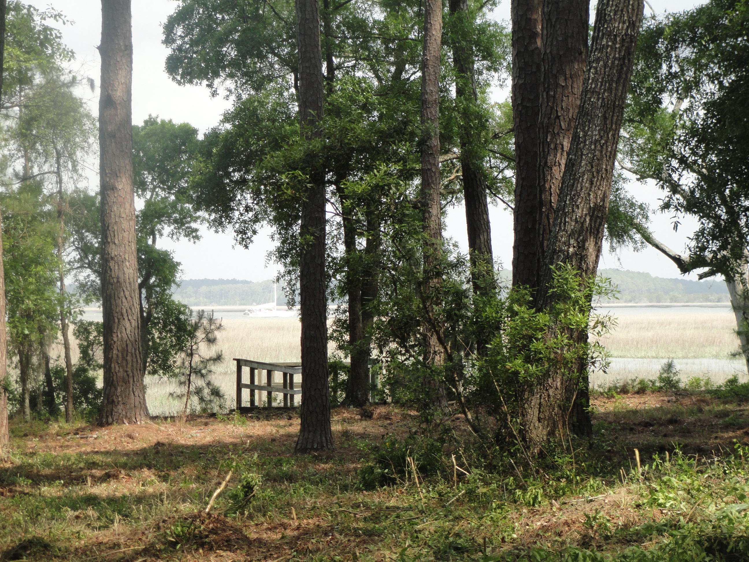 Photo of 6946 Bears Bluff Road, Wadmalaw Island, SC 29487