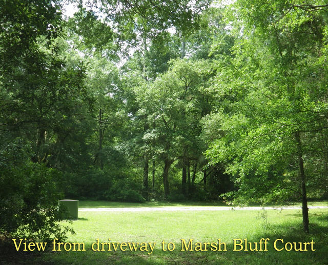 Photo of 11 & 12 Marsh Bluff