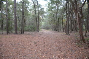 Photo of 1405 Palmetto Blvd, Edisto Island, SC 29438