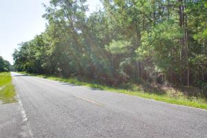 Oakville Road, Adams Run, SC 29426