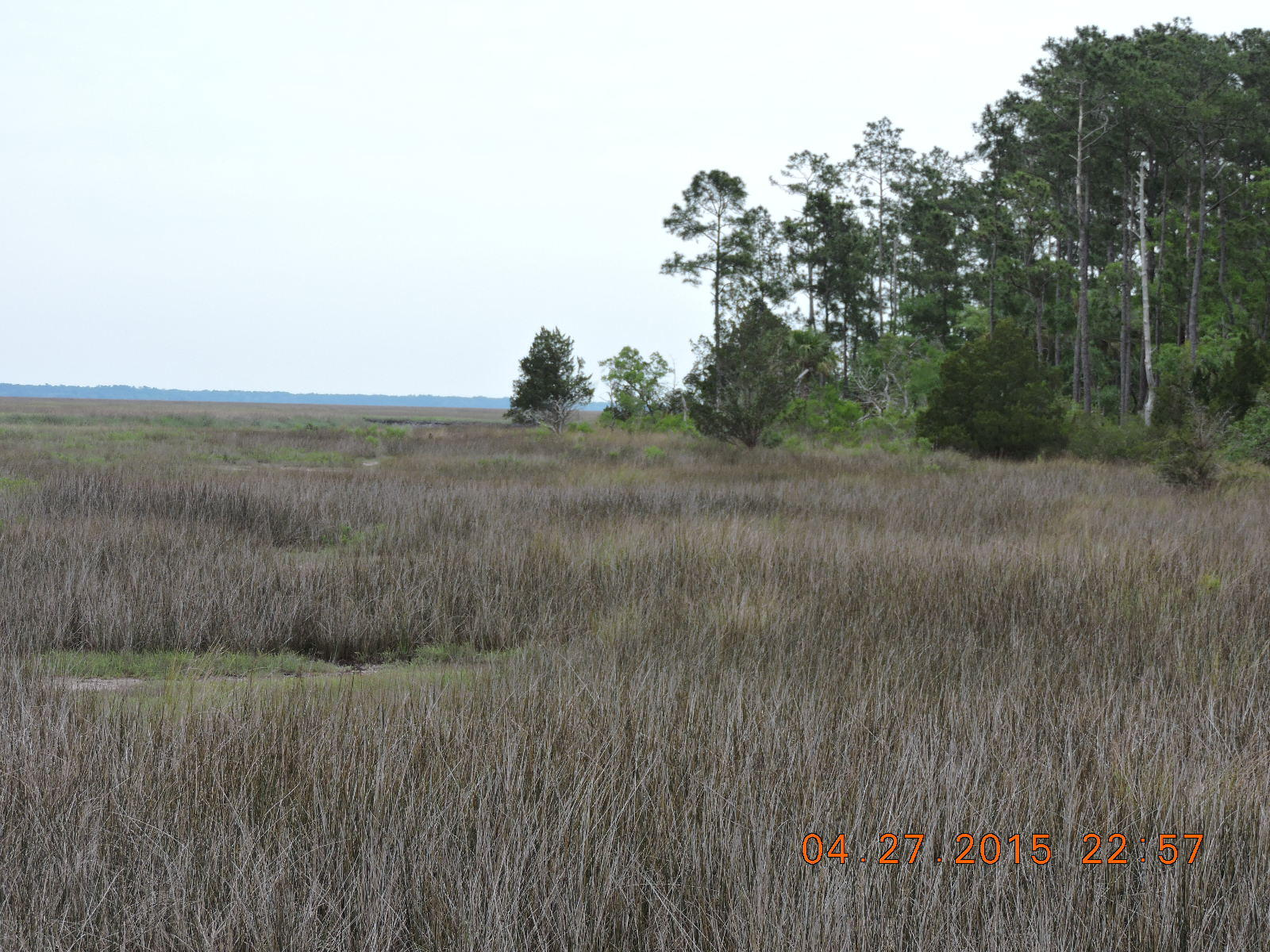Photo of 3260 Lowtide Ln, Edisto Island, SC 29438
