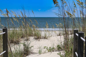 Home for Sale Pelican Flight Drive , Dewees Island , SC