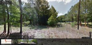 Lot 3 Sugar Hill Road, Adams Run, SC 29426
