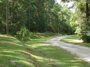 2 Beaver Dam Road, Adams Run, SC 29426