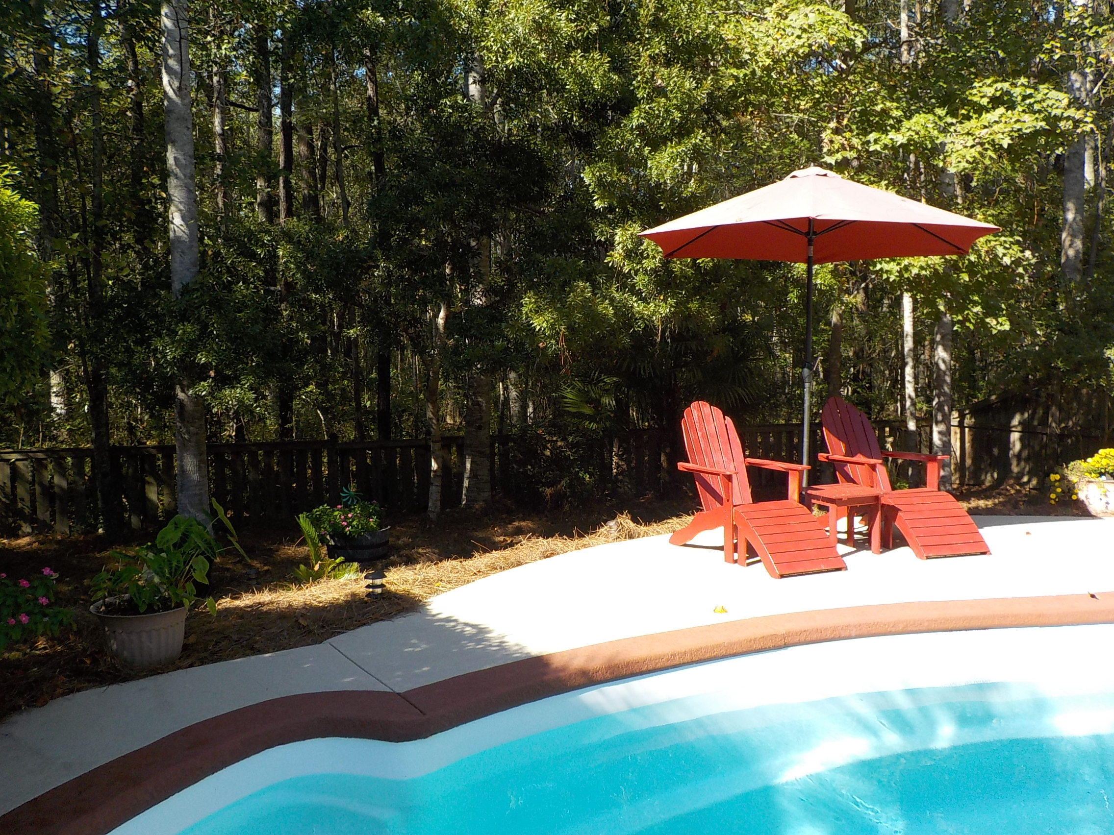 Cottages of Gahagan Homes For Sale - 129 White Pine, Summerville, SC - 16