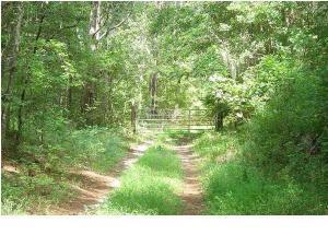 Rehoboth Road, Cottageville, SC 29435