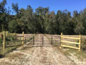 Mcmillan Road, Greeleyville, SC 29056