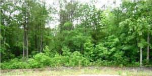 Lot 7 Shiver Farms Lane, Saint Stephen, SC 29479