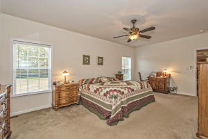 215 WRIGHT ROAD, RIDGEVILLE, SC 29472  Photo 20