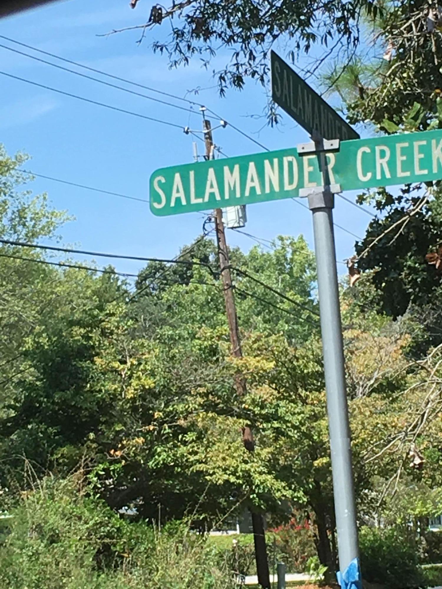 Photo of 8860 Salamander Rd, North Charleston, SC 29406