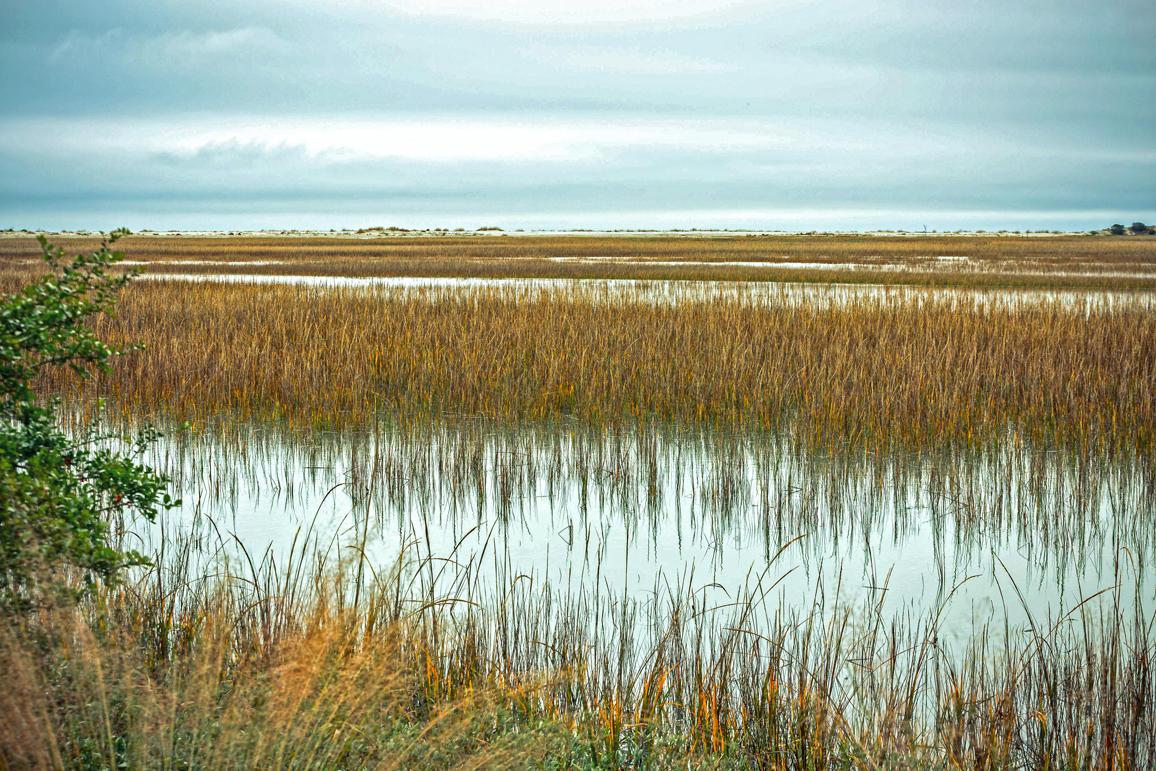 Seabrook Island Homes For Sale - 3011 Marsh Haven, Seabrook Island, SC - 48