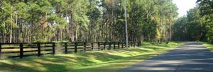 1 Hydrick Road, Ruffin, SC 29475
