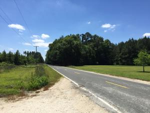 Parkers Ferry Road, Adams Run, SC 29426