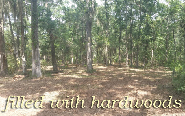Photo of 8766 Palmetto Rd, Edisto Island, SC 29438
