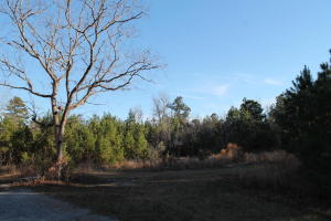 3969 Highway 45, Cross, SC 29436