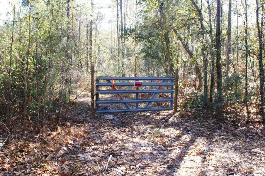 Photo of 130 Albert Ln, Ridgeville, SC 29472