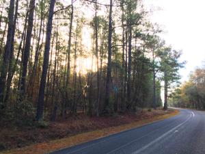 3614 Red Oak Road, Cottageville, SC 29435