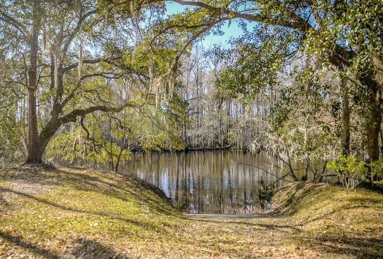 Photo of 104 Canal St, St George, SC 29477