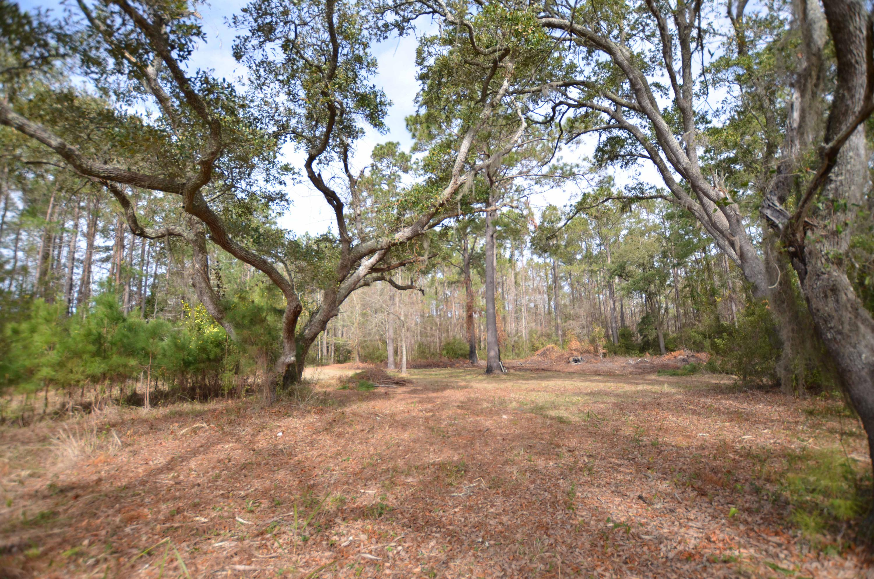 Photo of 9621 2 Pines Rd, McClellanville, SC 29458