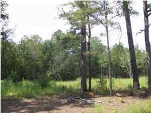 Spelltown Road, Cottageville, SC 29435