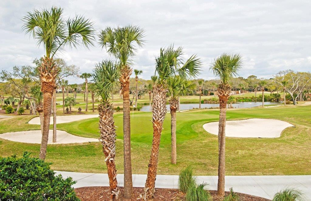 Atrium Villas Homes For Sale - 2909 Atrium Villa, Johns Island, SC - 9