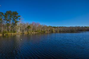 580 Avant Lake, Walterboro, SC 29488