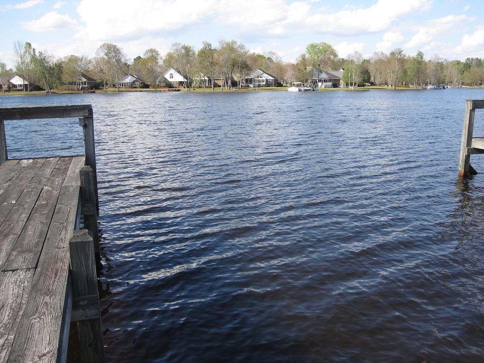 Photo of 301 Lake Arbu Dr, Manning, SC 29102
