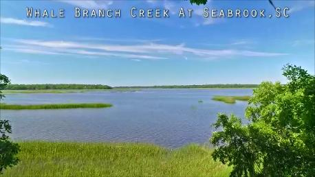 Photo of 18 Briarfield Ct, Seabrook, SC 29940