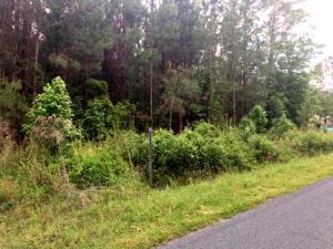 4616 Rum Gulley Road, Islandton, SC 29929