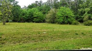 Alligator Road, Cordesville, SC 29434