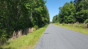 Wesley Chapel Road, Cottageville, SC 29435