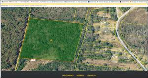 1 Mauss Hill Rd., Adams Run, SC 29426