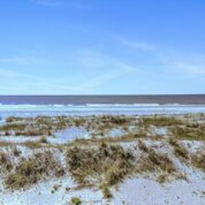 315 W Ashley Avenue, Folly Beach, SC 29439