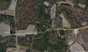 Bird Pond Road, Reevesville, SC 29471