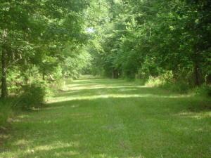 3 Delemar Hwy., Summerville, SC 29485