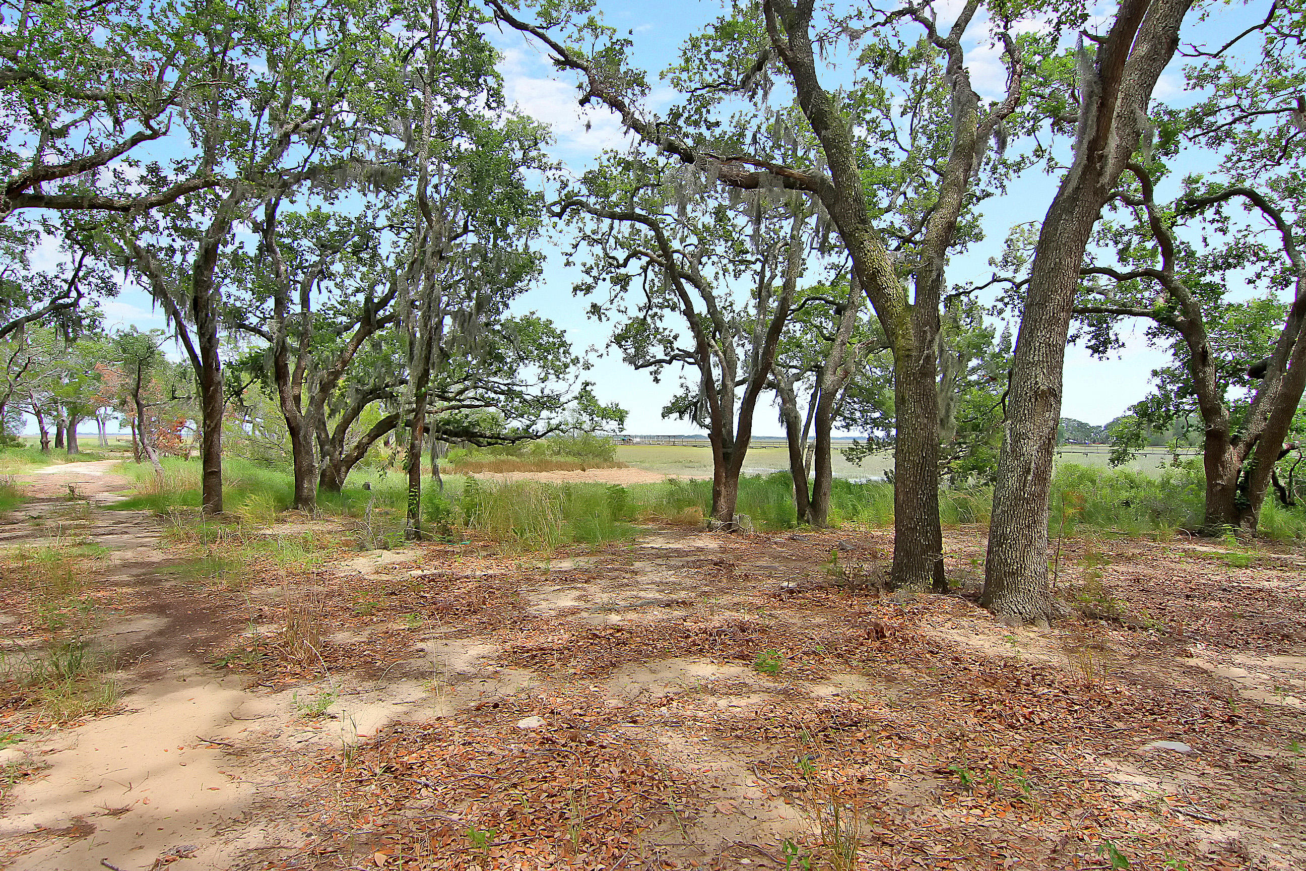 Photo of 621 Parrot Point Dr, Charleston, SC 29412