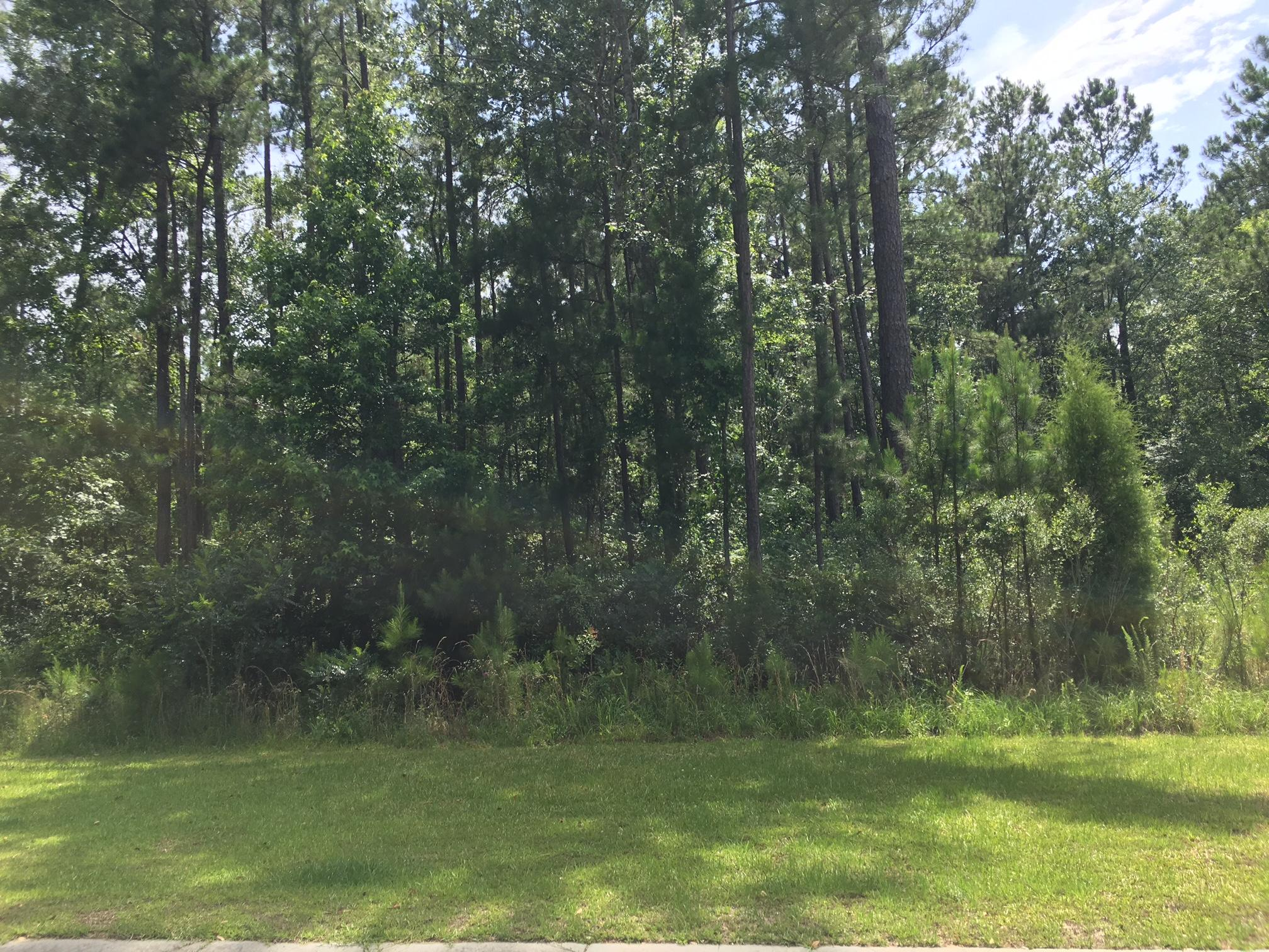 Photo of 231 Summer Breeze Way, Moncks Corner, SC 29461
