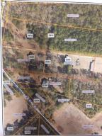 0000 Highway 174, Adams Run, SC 29426