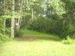Sniders Hwy, Ruffin, SC 29475