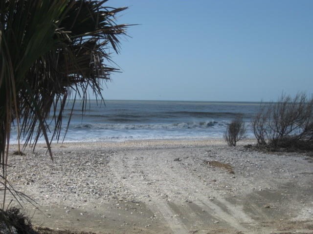 Photo of 38 Eel Island